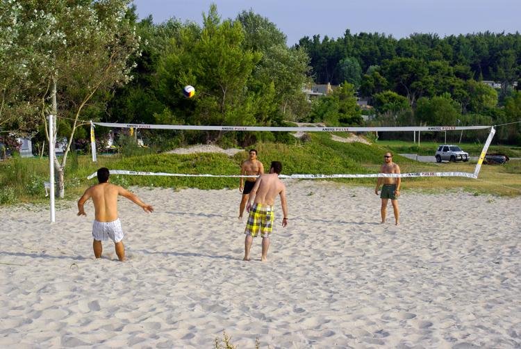 Как своими руками сделать волейбольную площадку на даче 31