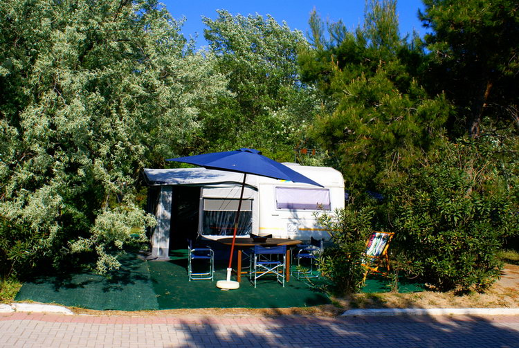 Camping Sites Camping Blue Dream